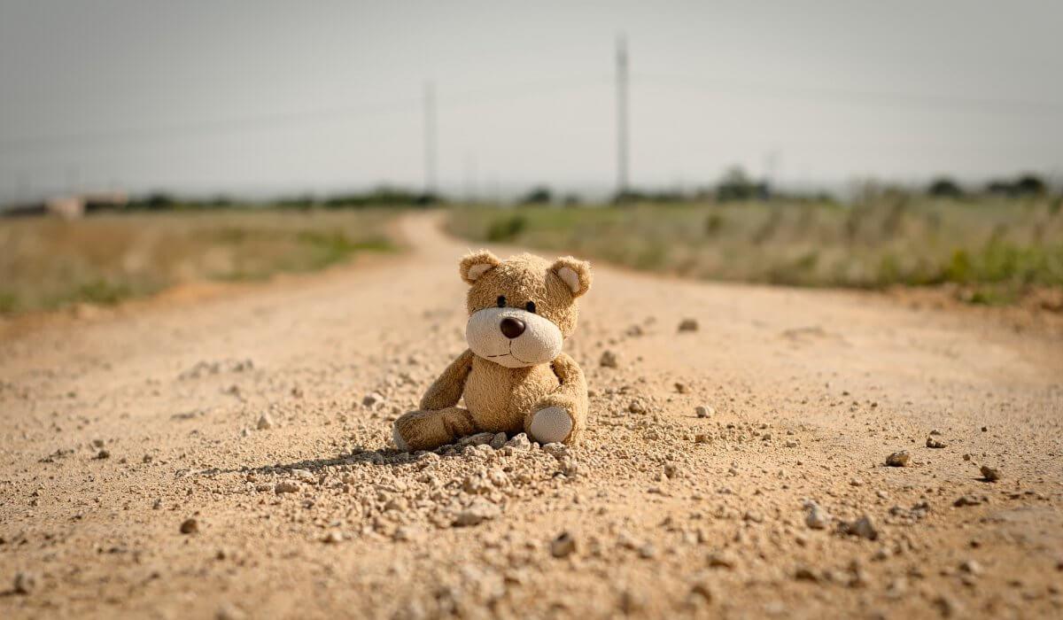 Verhuizing regelen zonder beren op de weg